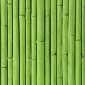 1С Elements / 10 Bamboo Buzz 26-Amazone обои