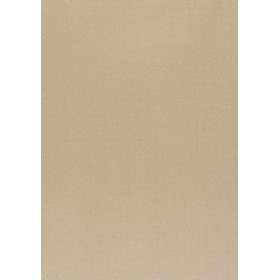 Amilly - Vion Beige