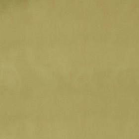Juilly - Vitre Olive