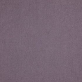 Cashmere - Cashmere Wisteria