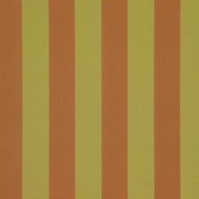 Candy Stripes - Elvan Star