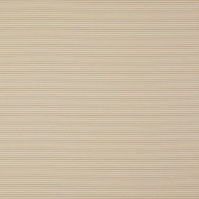 Candy Stripes - Flute Beige