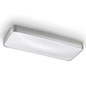 Потолочный светильник RAS 15-4686-S2-M1