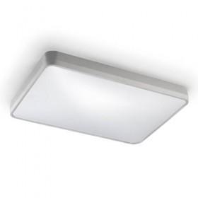Потолочный светильник RAS 15-4687-S2-M1