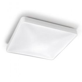 Потолочный светильник RAS 15-4688-14-M1