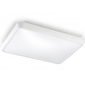 Потолочный светильник RAS 15-4687-14-M1