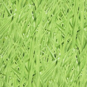 1С Elements / 21 Grassy Meadow 16-Moss обои