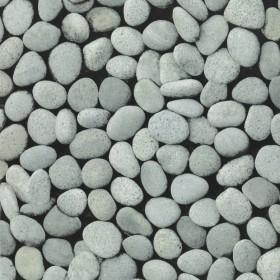 1С Elements / 47 Pebbles 09-Shark обои