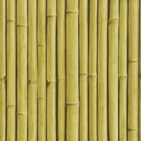 1С Elements / 8 Bamboo Buzz 24-Hay обои