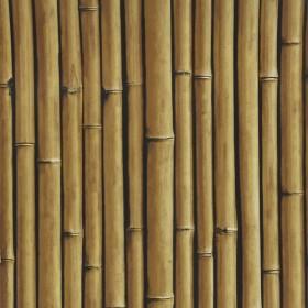 1С Elements / 9 Bamboo Buzz 25-Macadamia обои