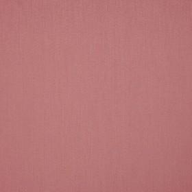 Mezzano II - Illuminator Rose
