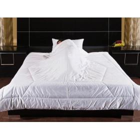 Одеяло Feng-shui 172х205